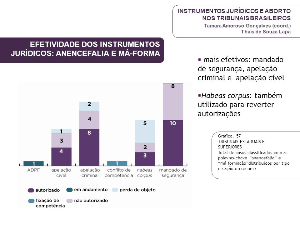 EFETIVIDADE DOS INSTRUMENTOS JURÍDICOS: ANENCEFALIA E MÁ-FORMA