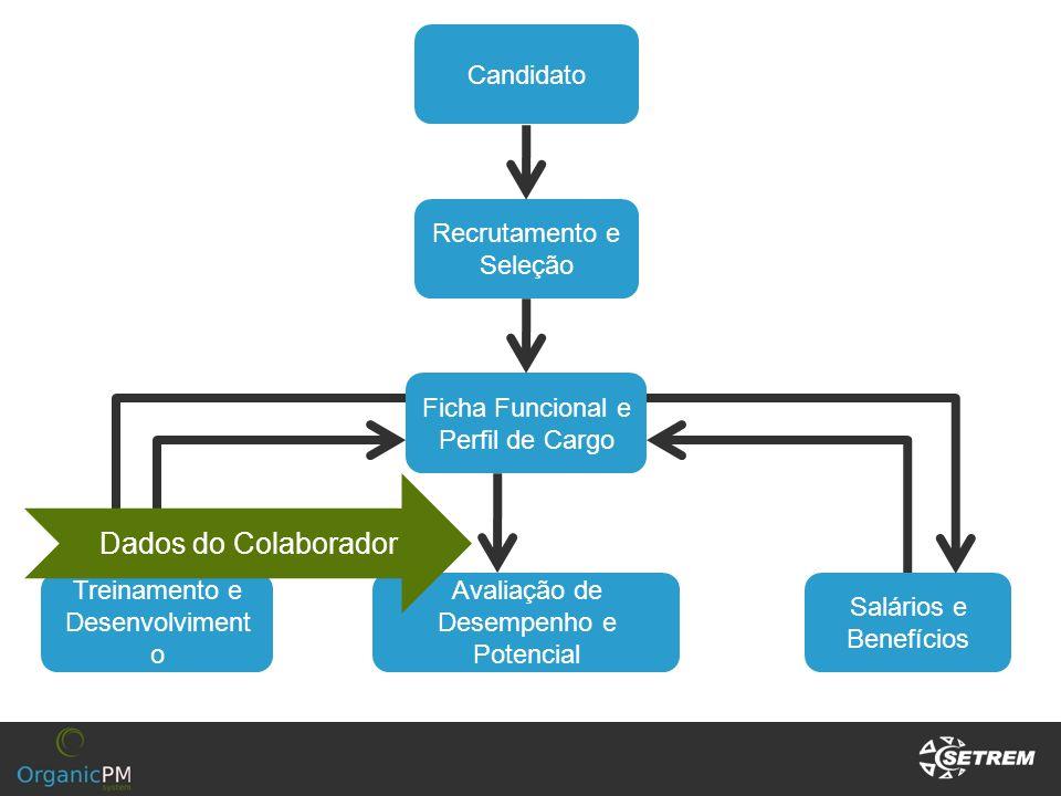 Dados do Colaborador Candidato Recrutamento e Seleção