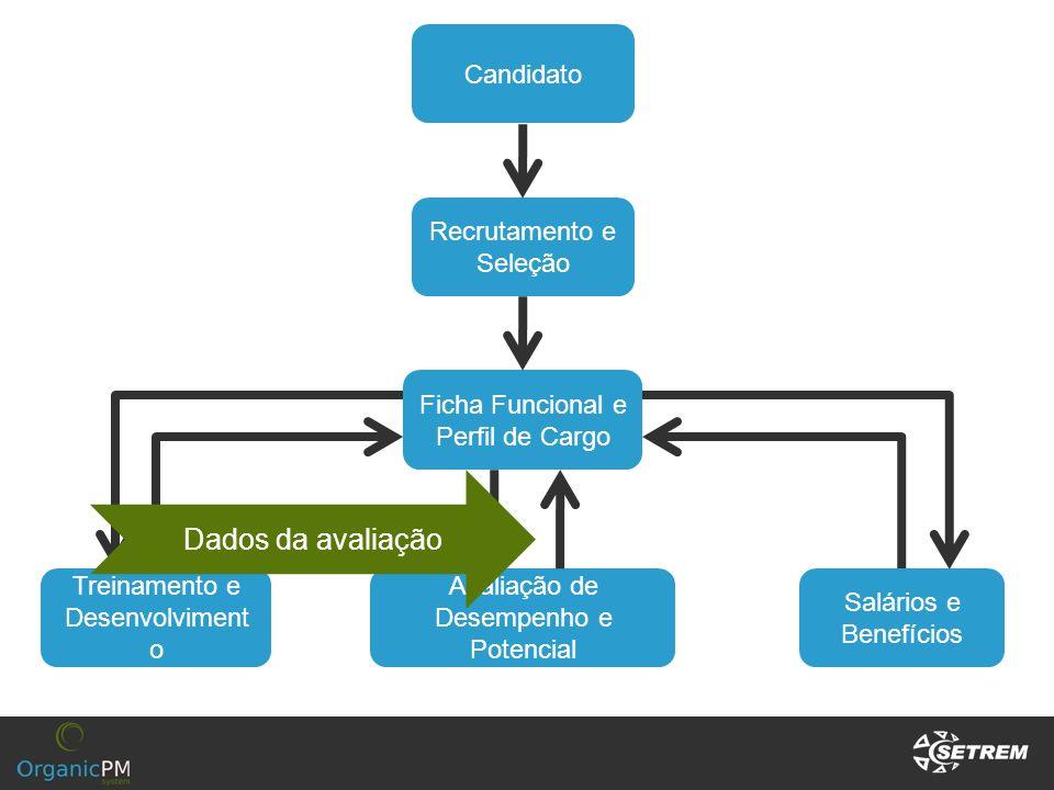 Dados da avaliação Candidato Recrutamento e Seleção