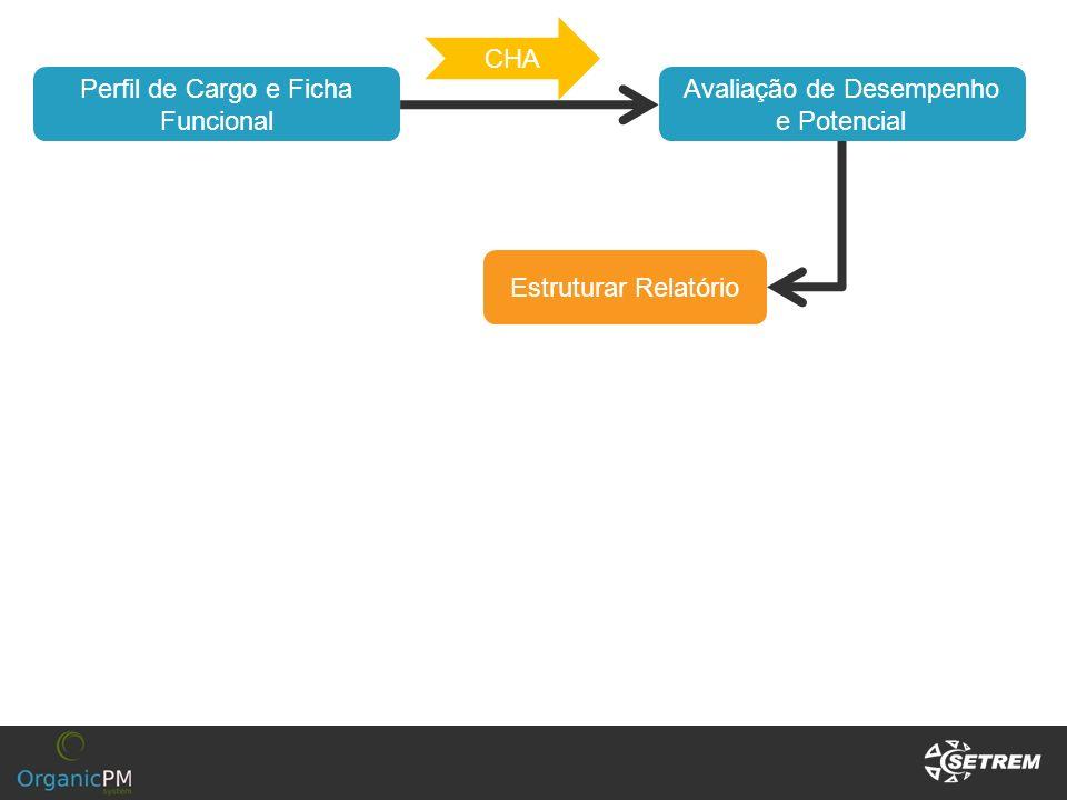 Perfil de Cargo e Ficha Funcional Avaliação de Desempenho e Potencial