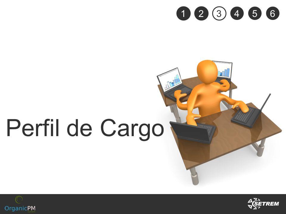 1 2 3 4 5 6 Perfil de Cargo