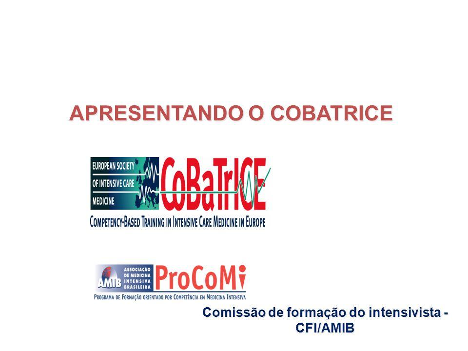 Comissão de formação do intensivista - CFI/AMIB