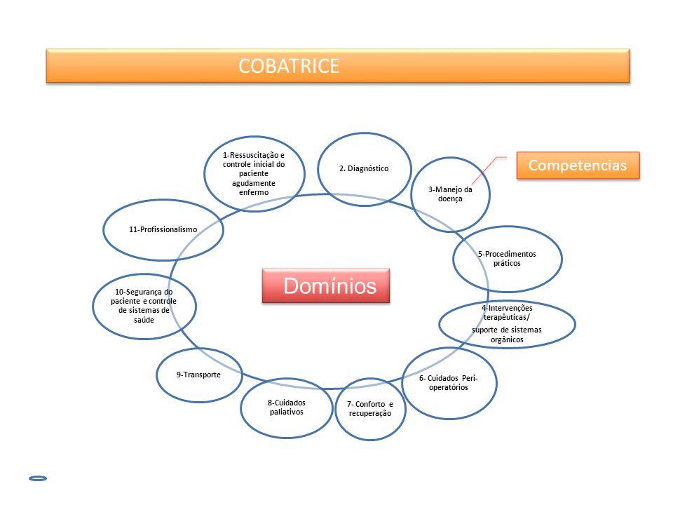 COBATRICE Competencias Domínios 9-Transporte