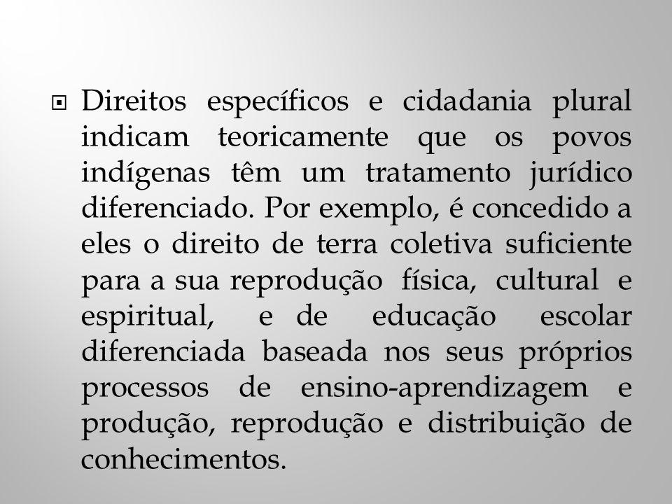 Direitos específicos e cidadania plural indicam teoricamente que os povos indígenas têm um tratamento jurídico diferenciado.