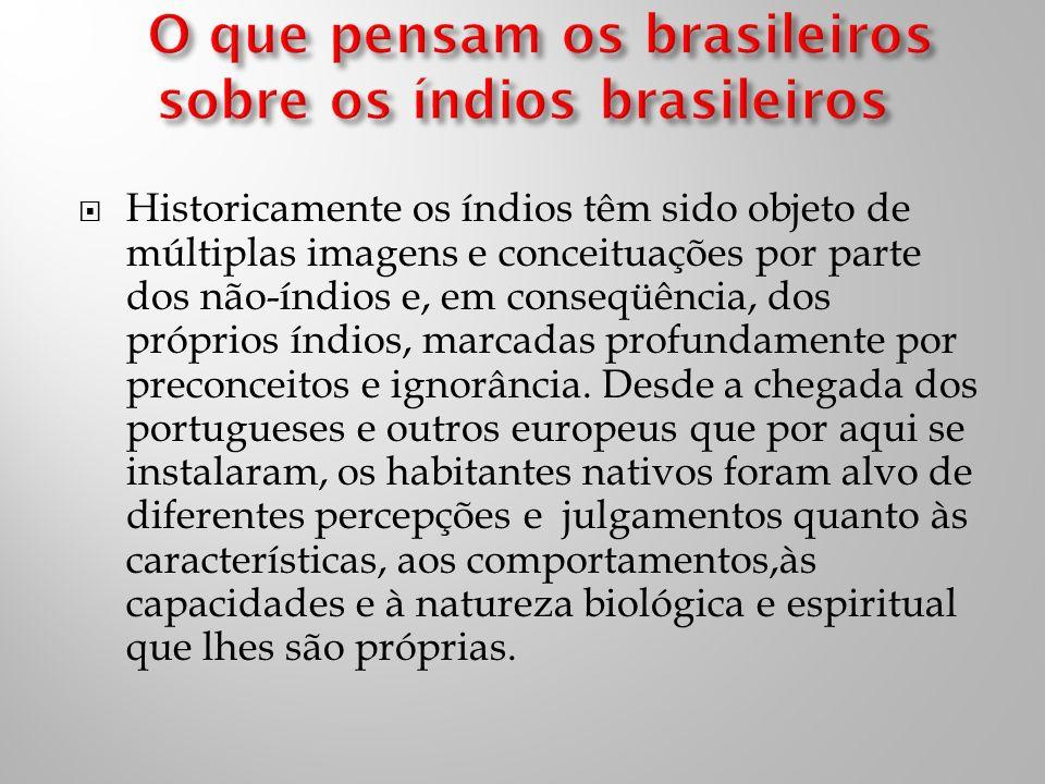 O que pensam os brasileiros sobre os índios brasileiros