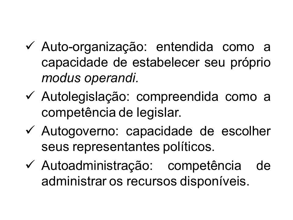 Auto-organização: entendida como a capacidade de estabelecer seu próprio modus operandi.