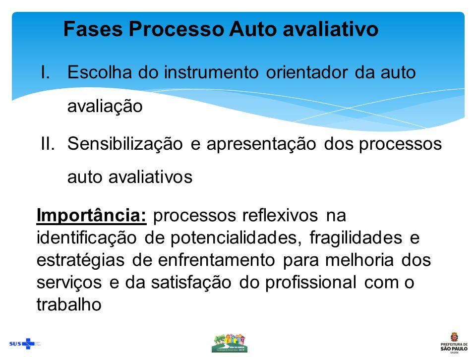 Fases Processo Auto avaliativo
