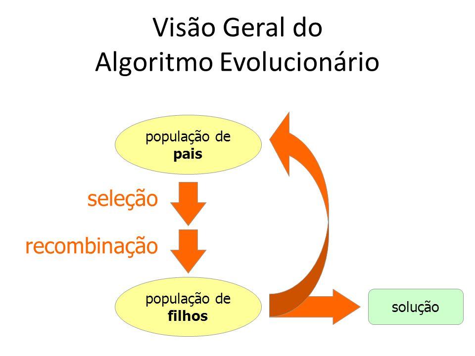 Visão Geral do Algoritmo Evolucionário