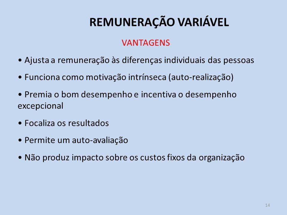 REMUNERAÇÃO VARIÁVEL VANTAGENS