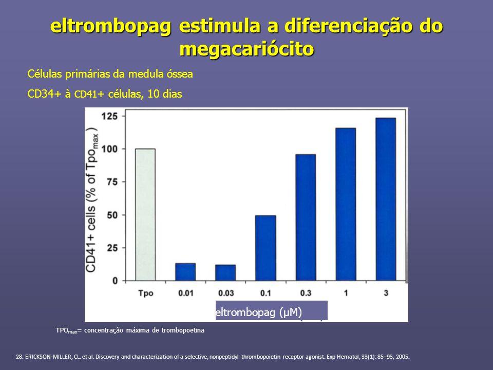 eltrombopag estimula a diferenciação do megacariócito