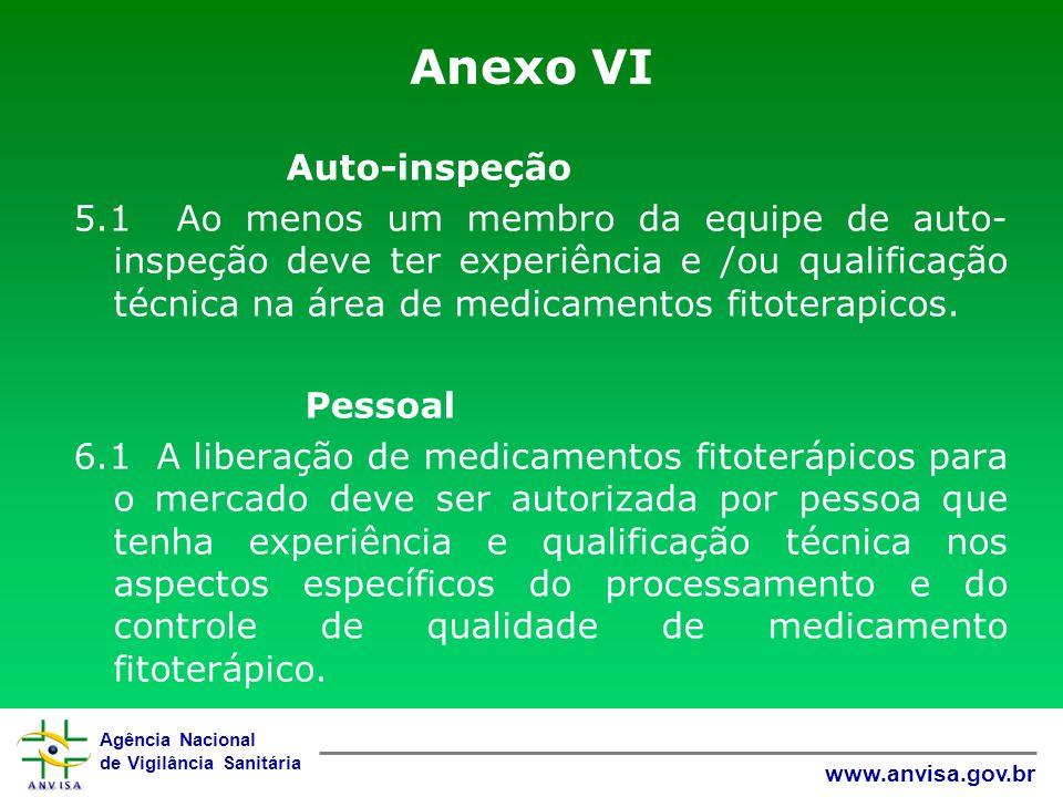 Anexo VI Auto-inspeção.