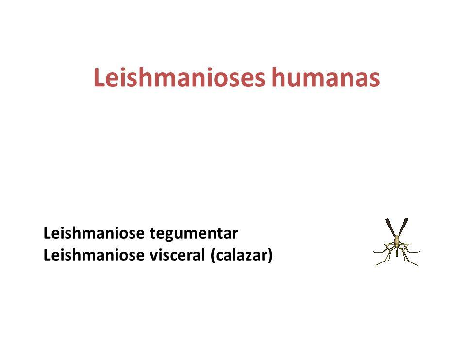 Leishmanioses humanas