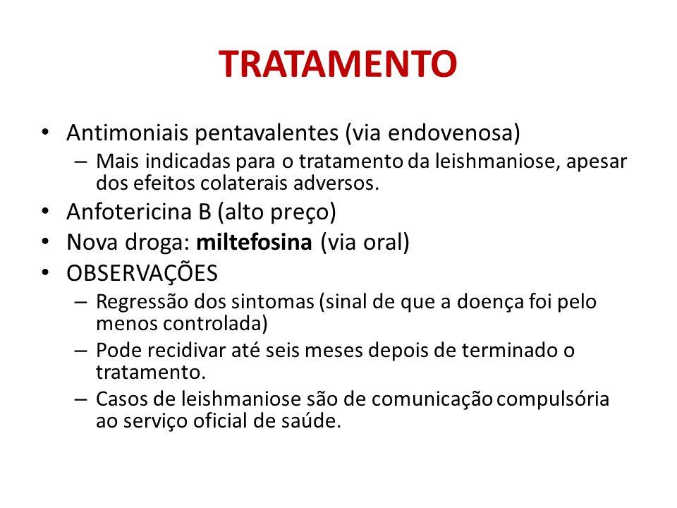 TRATAMENTO Antimoniais pentavalentes (via endovenosa)