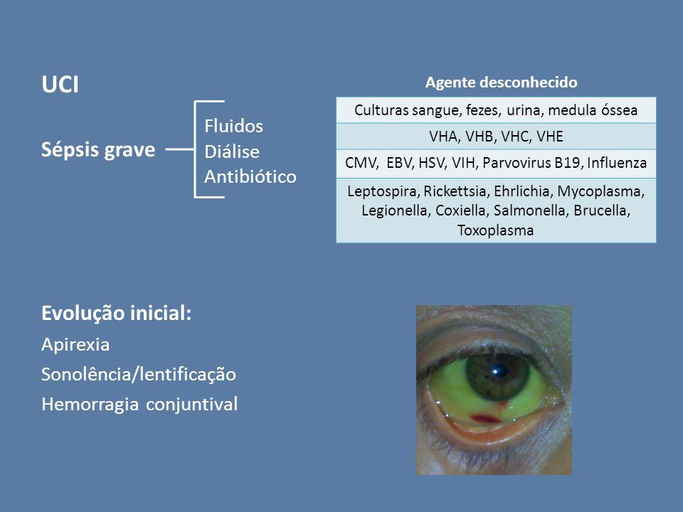 UCI Sépsis grave Evolução inicial: Fluidos Diálise Antibiótico