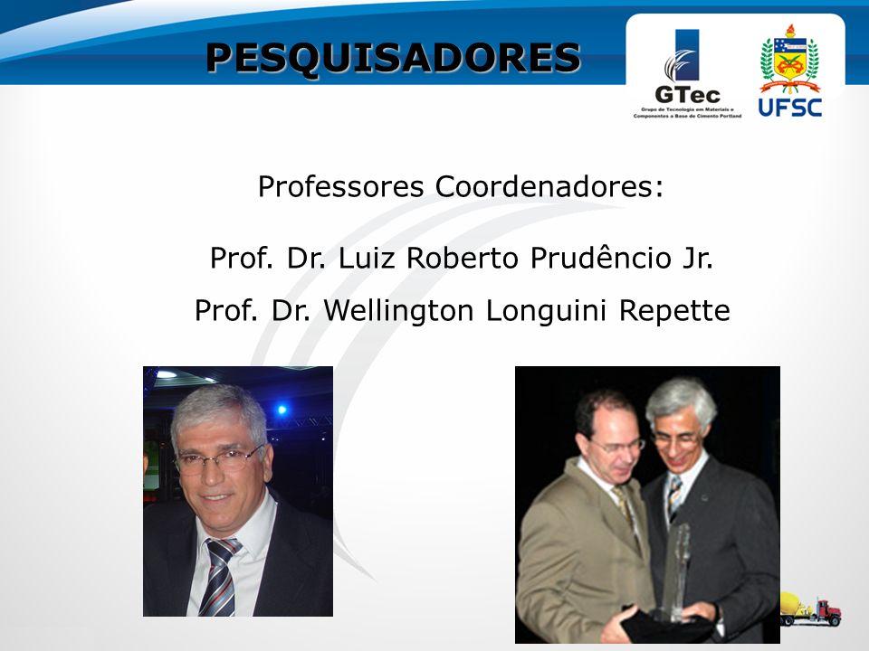 PESQUISADORES Professores Coordenadores: