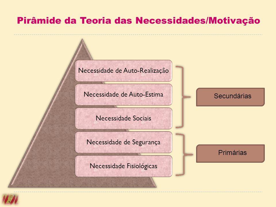 Pirâmide da Teoria das Necessidades/Motivação