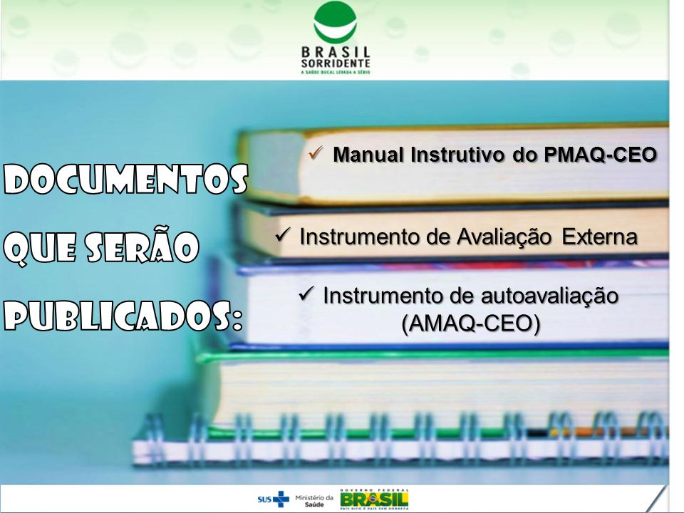 Instrumento de autoavaliação (AMAQ-CEO)