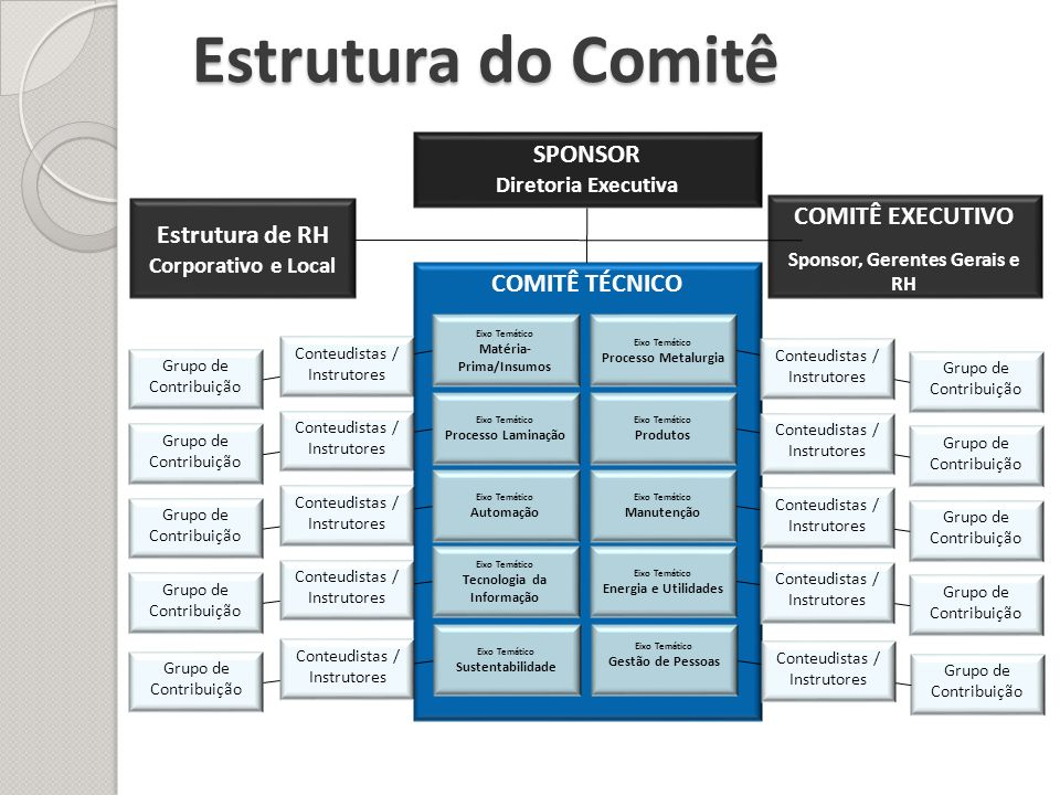 Estrutura do Comitê SPONSOR Diretoria Executiva COMITÊ EXECUTIVO