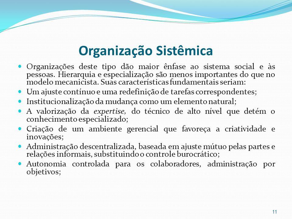 Organização Sistêmica