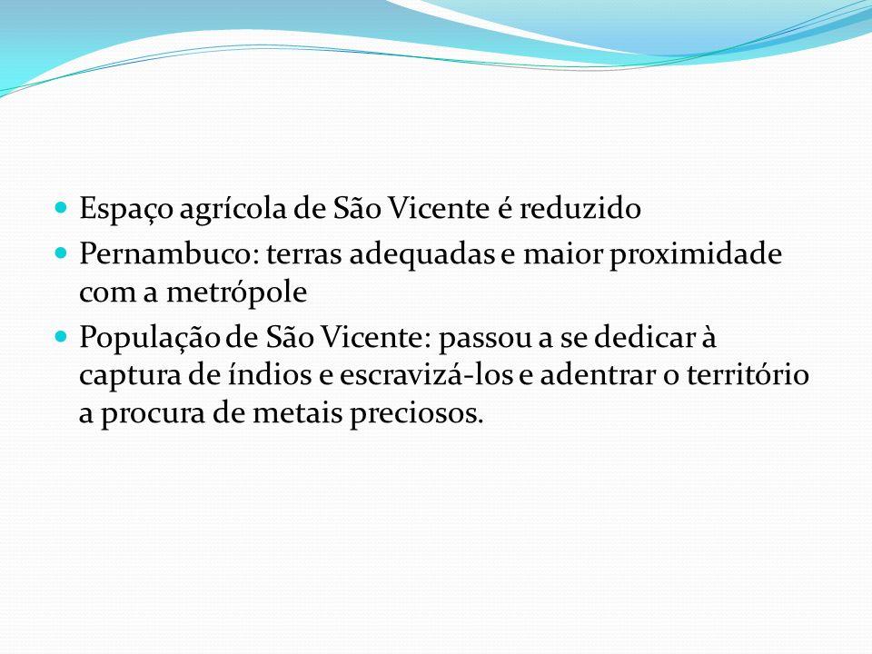 Espaço agrícola de São Vicente é reduzido