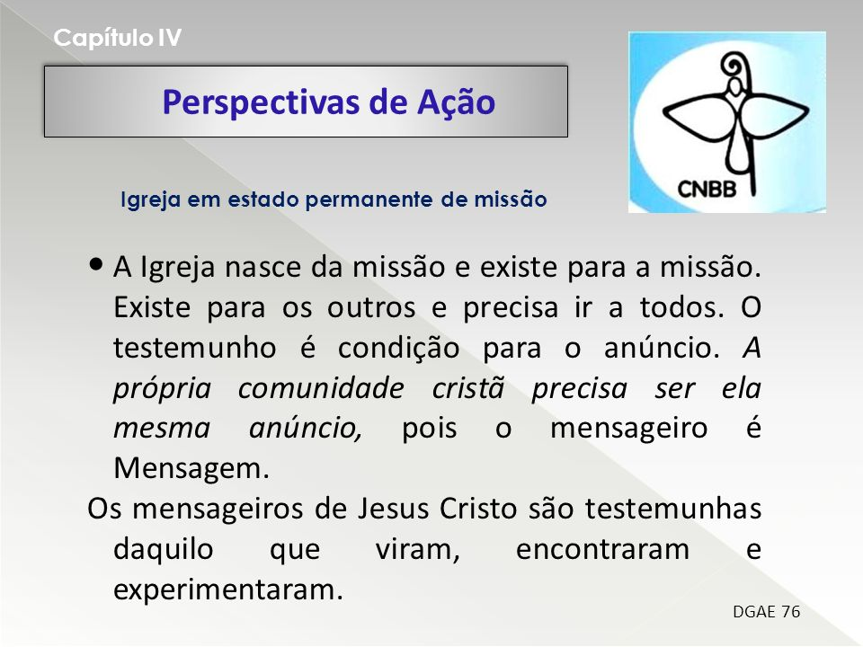 Capítulo IV Perspectivas de Ação. Igreja em estado permanente de missão.
