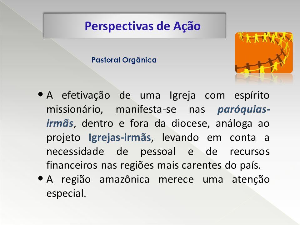 Perspectivas de Ação Pastoral Orgânica.