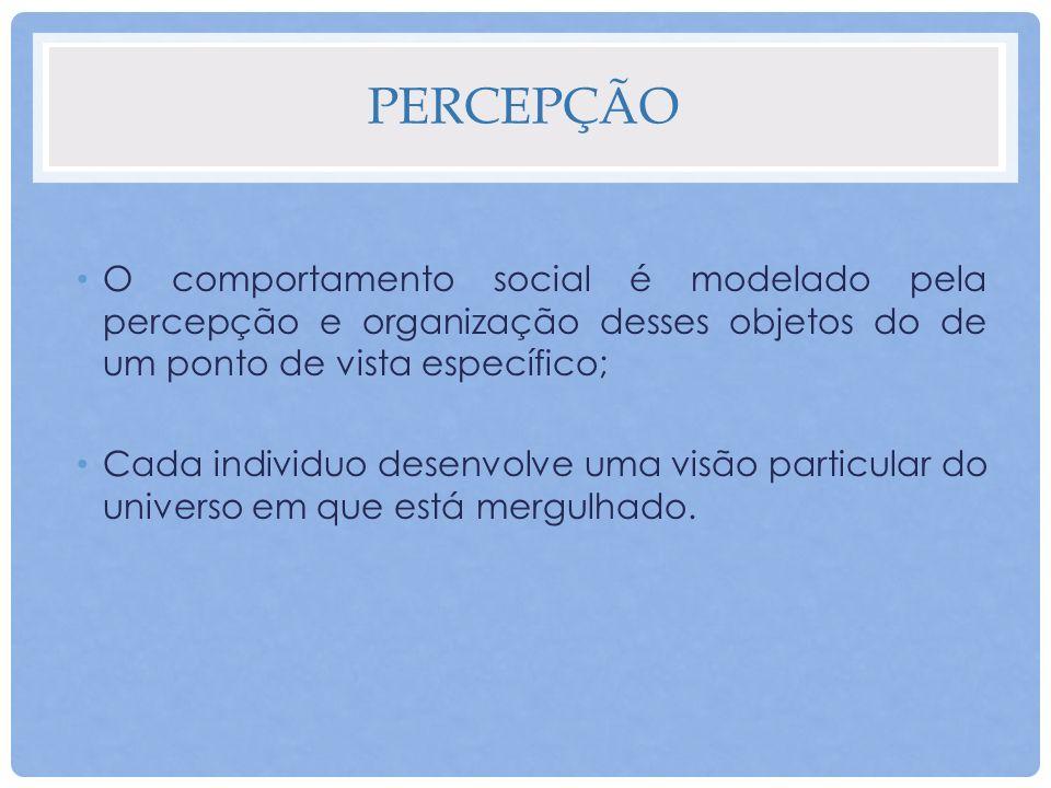 Percepção O comportamento social é modelado pela percepção e organização desses objetos do de um ponto de vista específico;