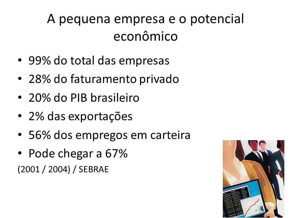 A pequena empresa e o potencial econômico