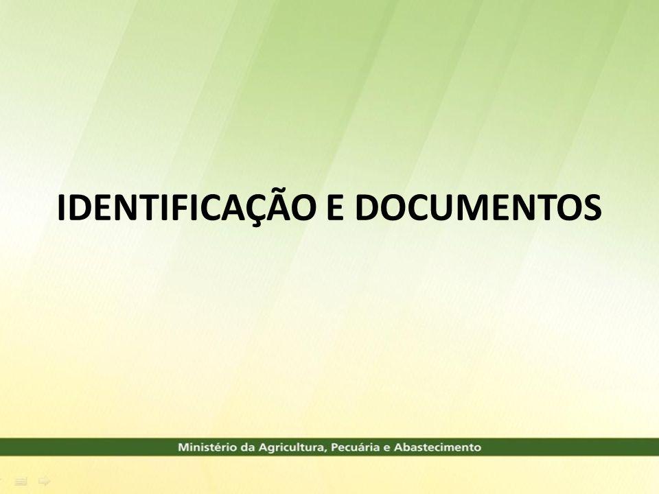 IDENTIFICAÇÃO E DOCUMENTOS