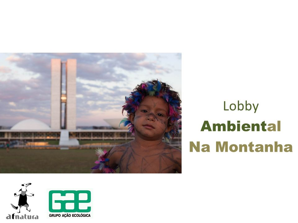 Lobby Ambiental Na Montanha
