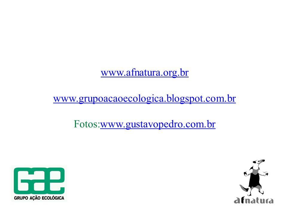 www.afnatura.org.br www.grupoacaoecologica.blogspot.com.br Fotos:www.gustavopedro.com.br