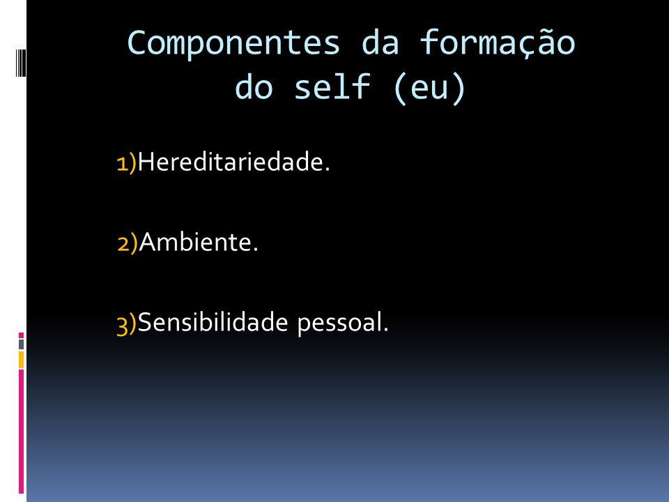 Componentes da formação do self (eu)