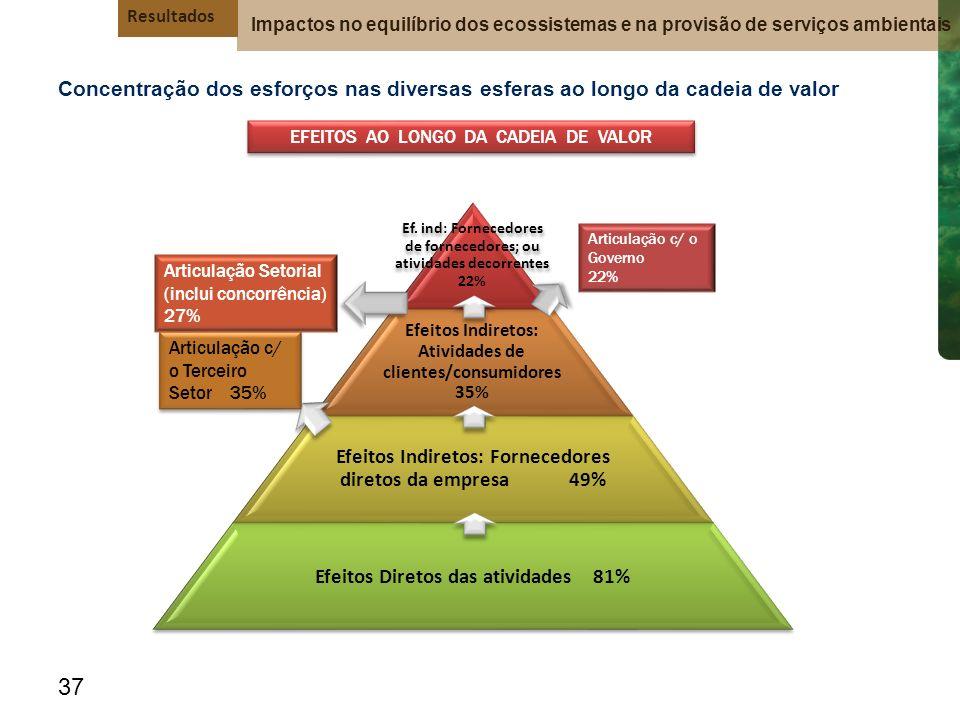 Efeitos Indiretos: Fornecedores diretos da empresa 49%