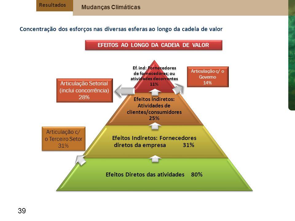 Efeitos Indiretos: Fornecedores diretos da empresa 31%