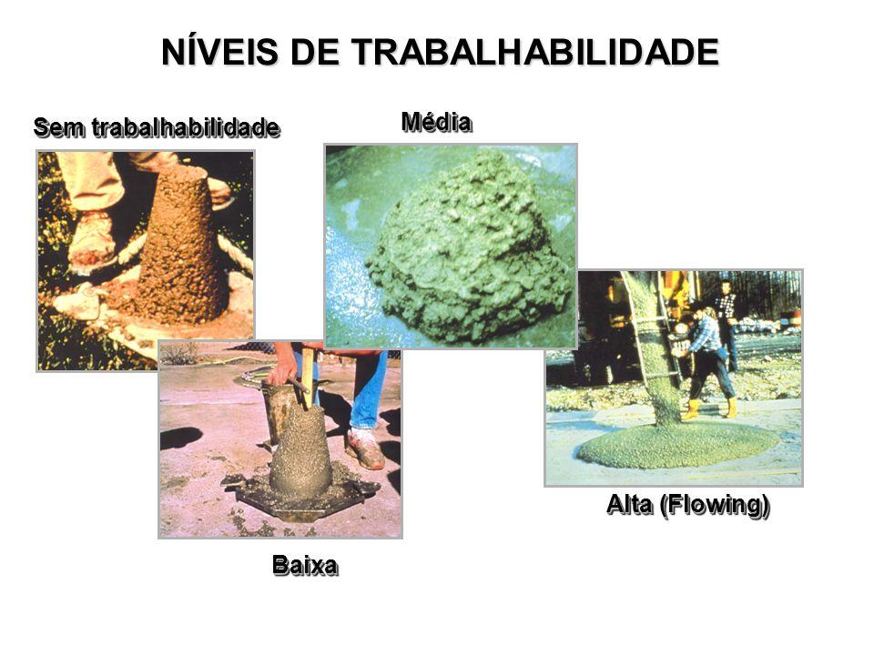 NÍVEIS DE TRABALHABILIDADE