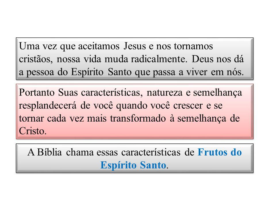 A Bíblia chama essas características de Frutos do Espírito Santo.