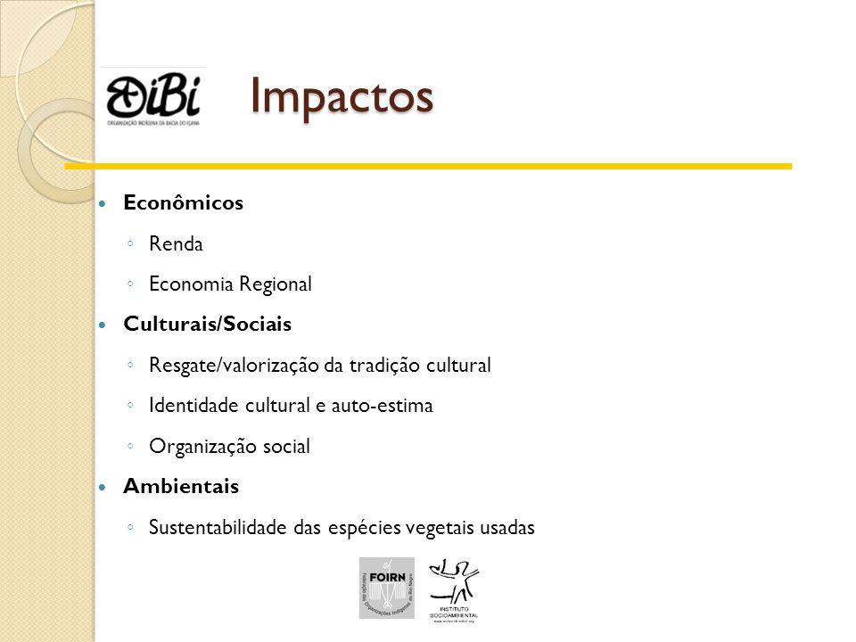 Impactos Econômicos Renda Economia Regional Culturais/Sociais
