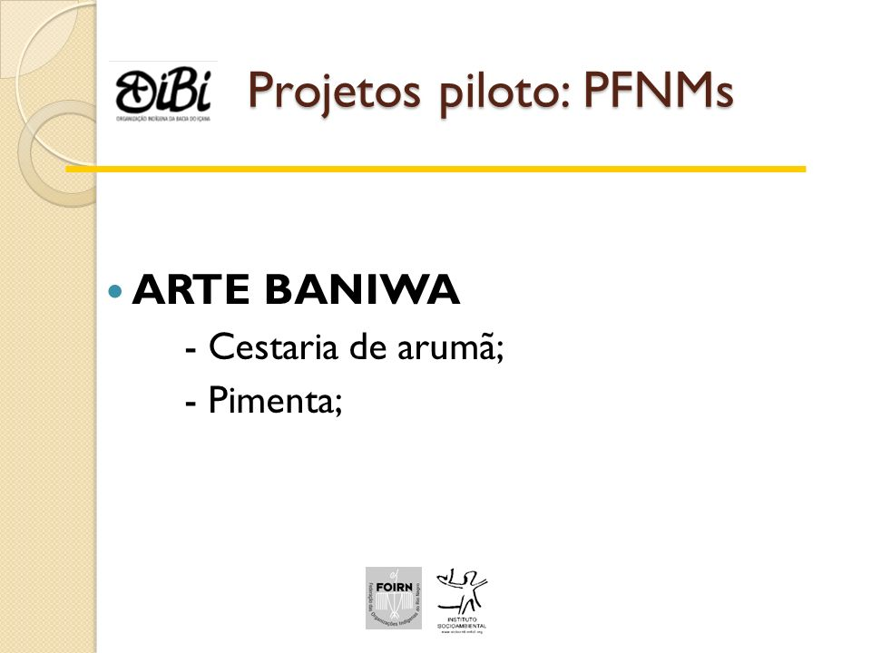 Projetos piloto: PFNMs