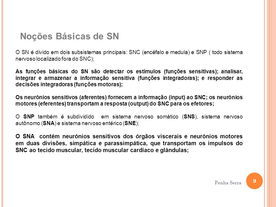 Noções Básicas de SN O SN é divido em dois subsistemas principais: SNC (encéfalo e medula) e SNP ( todo sistema nervoso localizado fora do SNC);