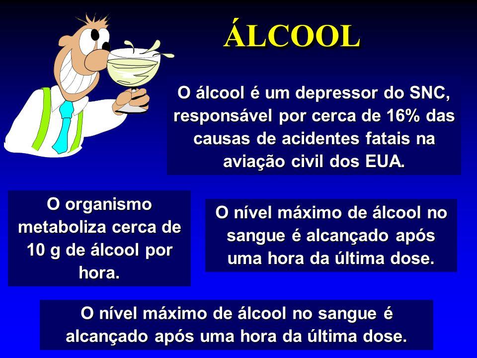 O organismo metaboliza cerca de 10 g de álcool por hora.