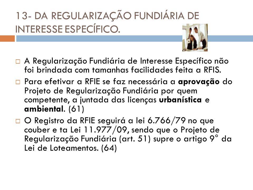 13- DA REGULARIZAÇÃO FUNDIÁRIA DE INTERESSE ESPECÍFICO.