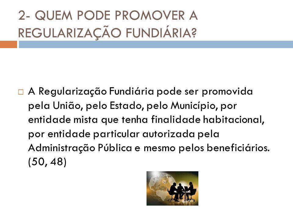 2- QUEM PODE PROMOVER A REGULARIZAÇÃO FUNDIÁRIA