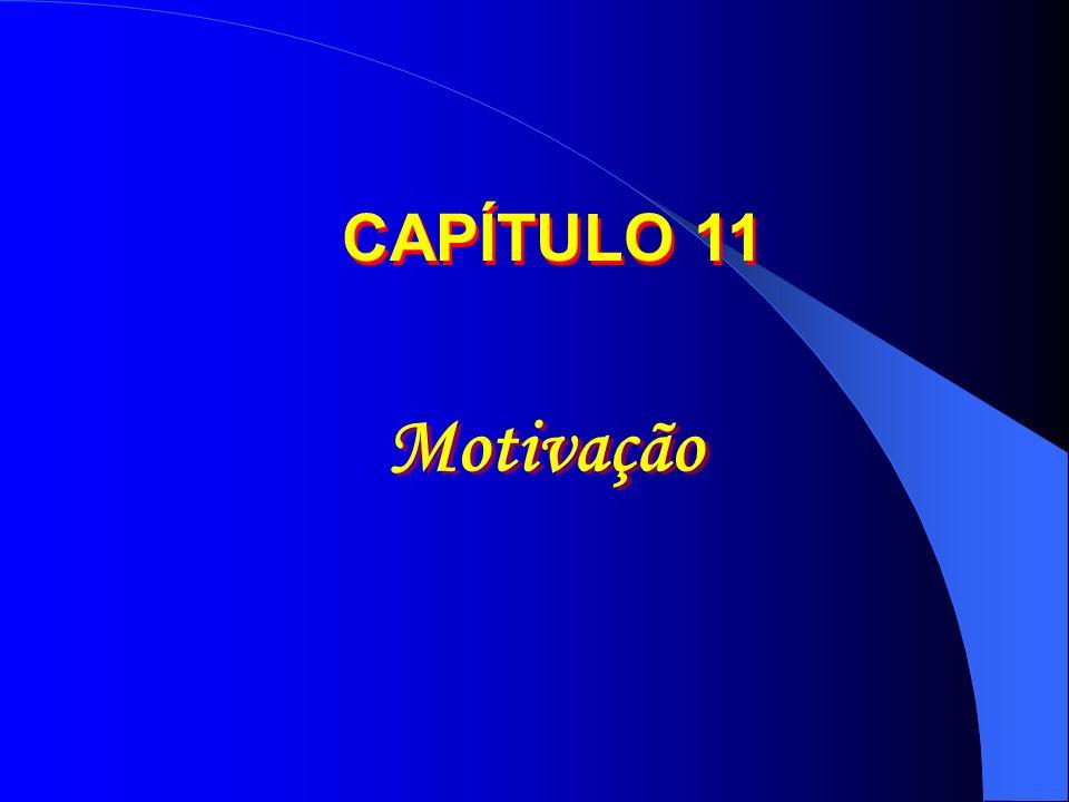 CAPÍTULO 11 Motivação