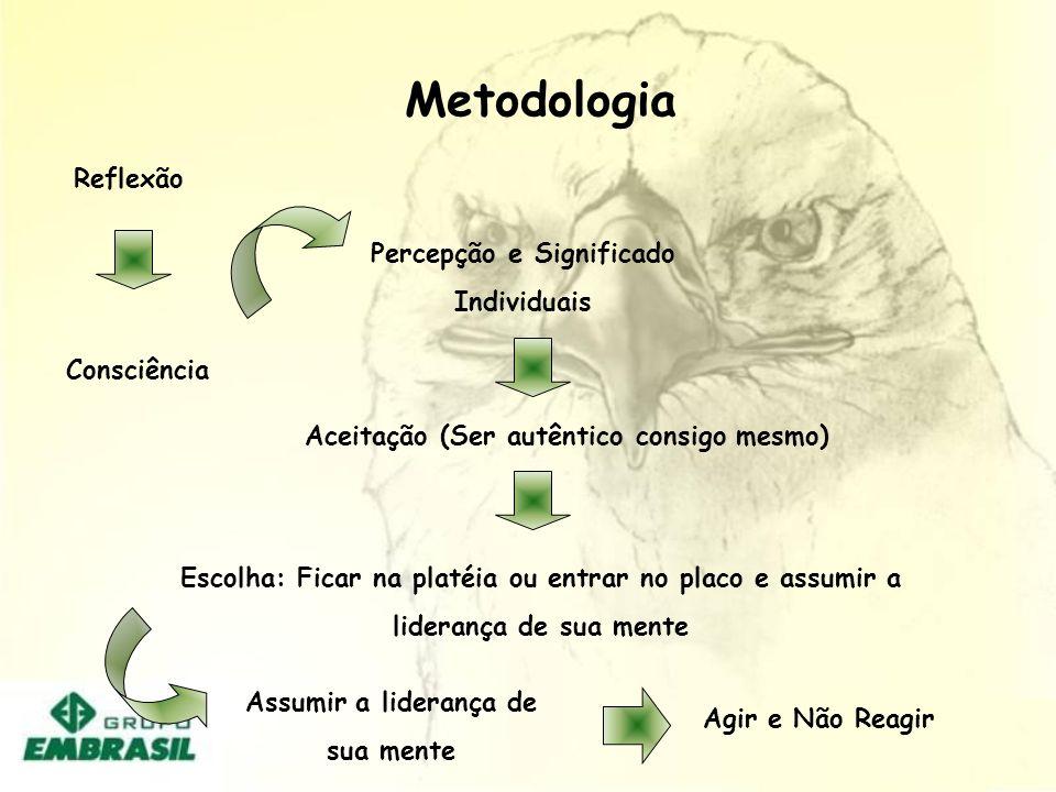 Metodologia Reflexão Percepção e Significado Individuais Consciência