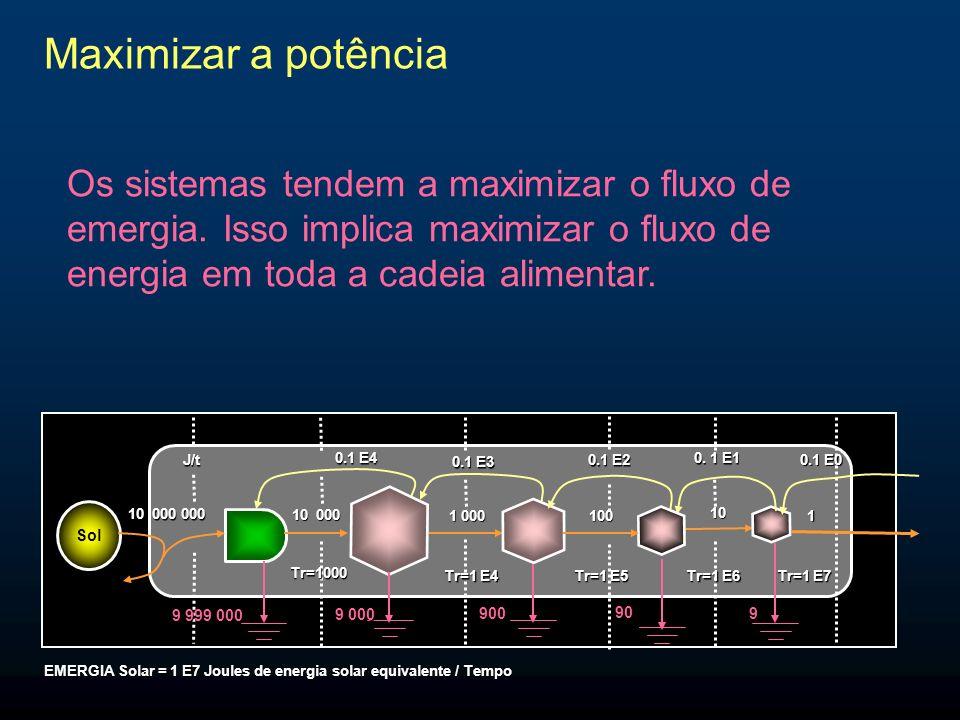 Maximizar a potência Os sistemas tendem a maximizar o fluxo de emergia. Isso implica maximizar o fluxo de energia em toda a cadeia alimentar.