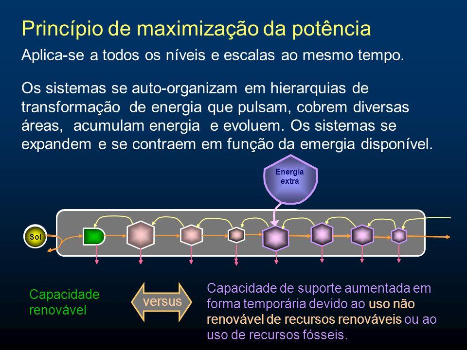 Princípio de maximização da potência