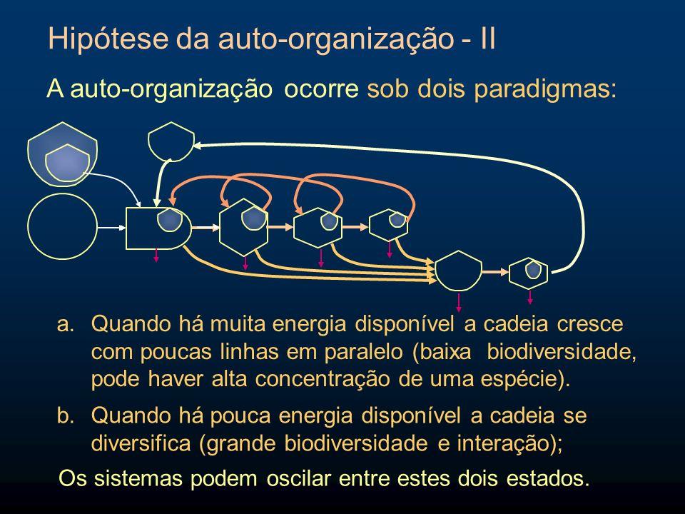 Hipótese da auto-organização - II