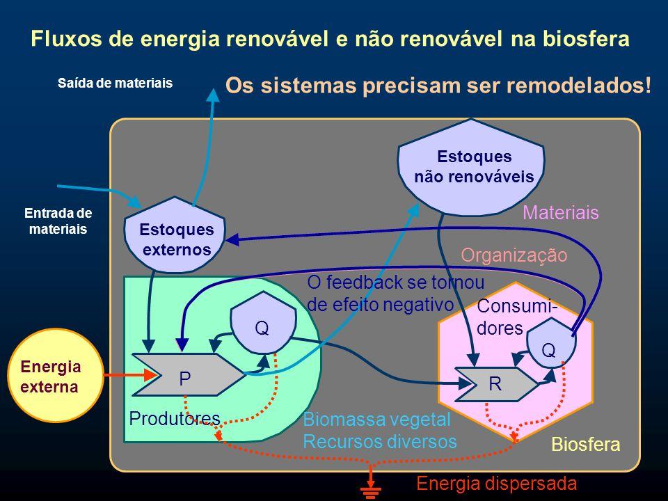 Fluxos de energia renovável e não renovável na biosfera