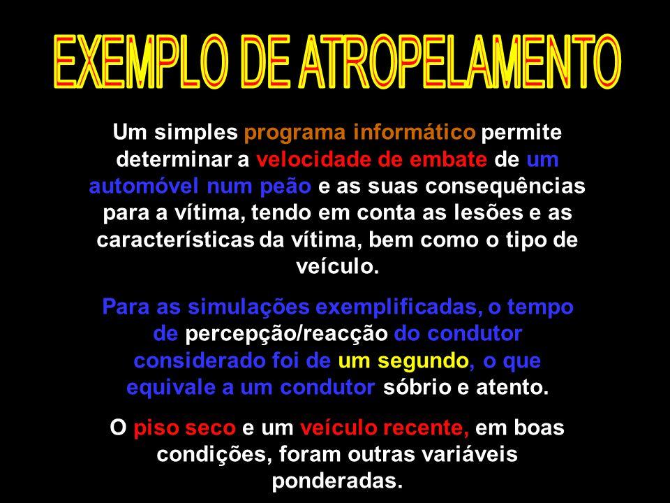 EXEMPLO DE ATROPELAMENTO