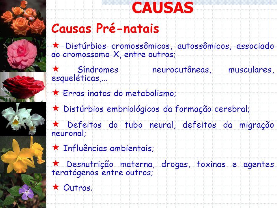 CAUSAS Causas Pré-natais